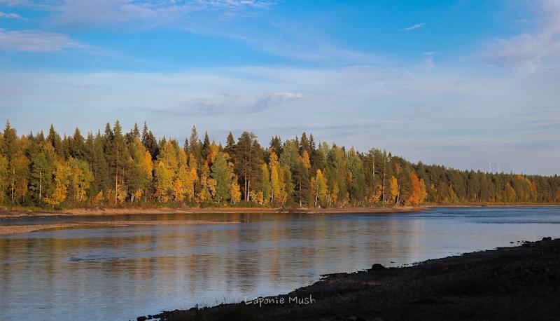 la rivière À côte de la maison - laponie suédoise en automne