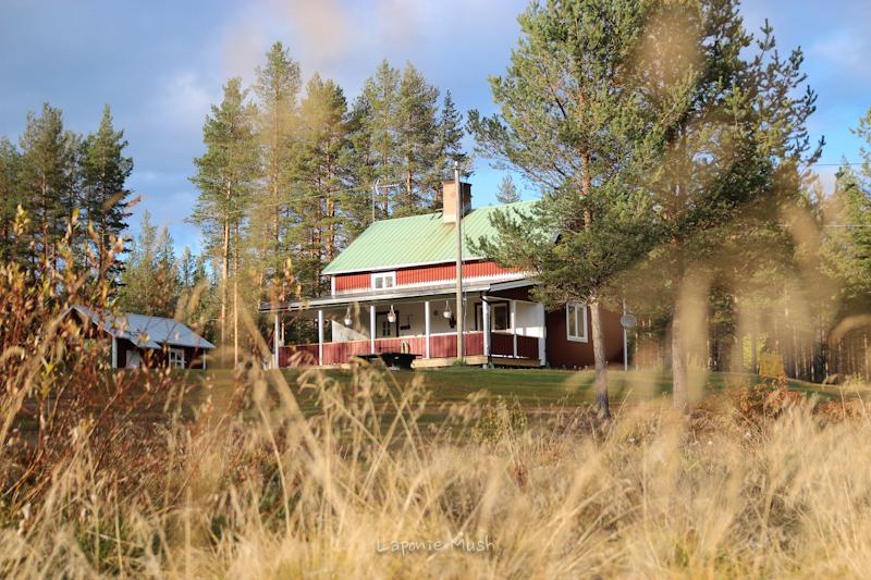 la maison en laponie suédoise à l'automne