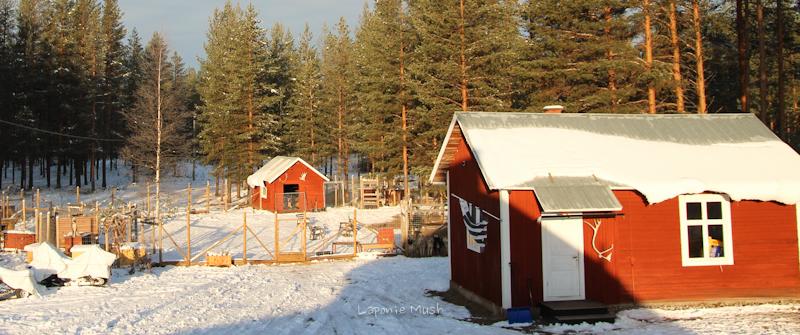 laponie-suédoise-hiver2