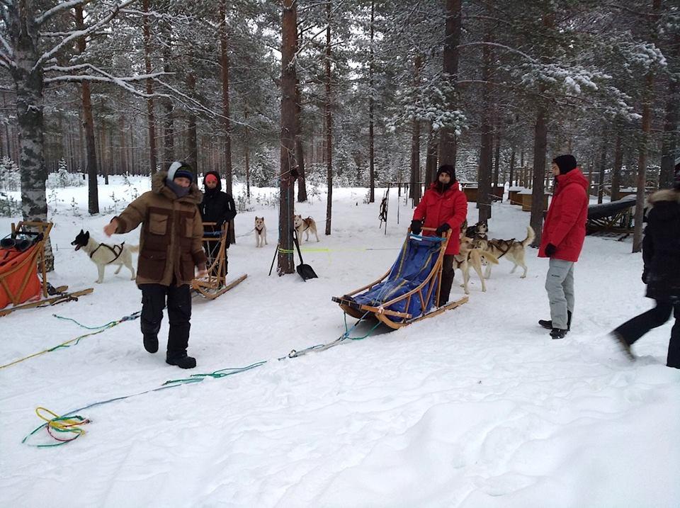 Laponie-suedoise-noel-traineau-chiens