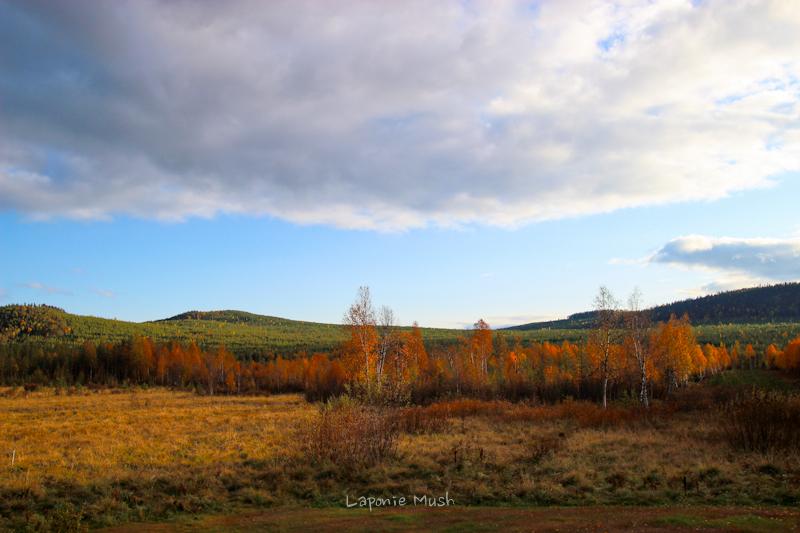 vue de la maison en automne - laponie suédoise