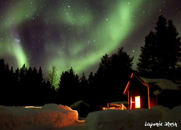 chien-traineau-aurore-boreale-sejour