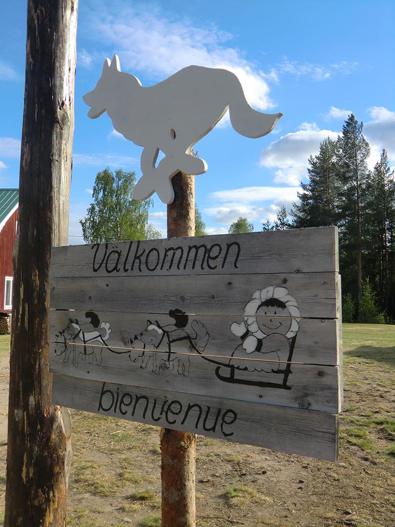 chien-traineau-laponie-sejour-bienvenue-valkommen