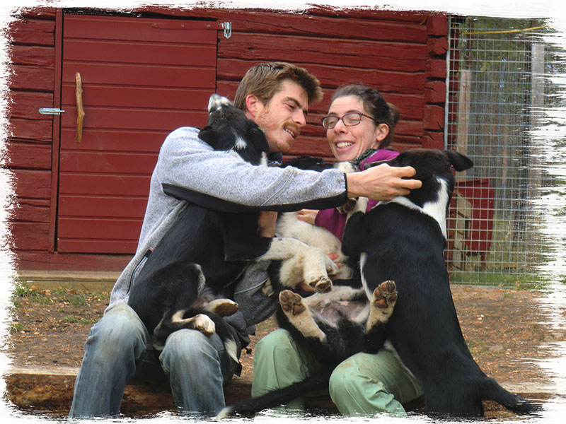 laponie-chien-traineau-portrait-couple