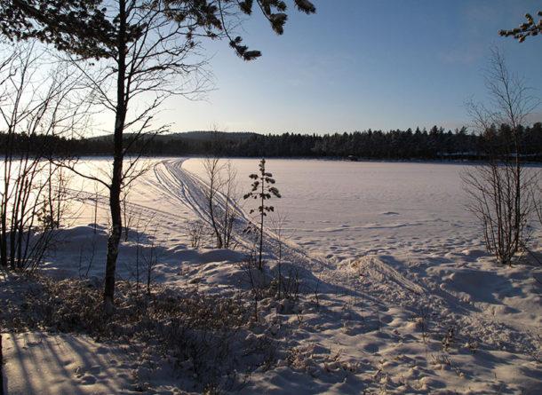 laponie-chien-traineau-hiver-sejour-bord-lac