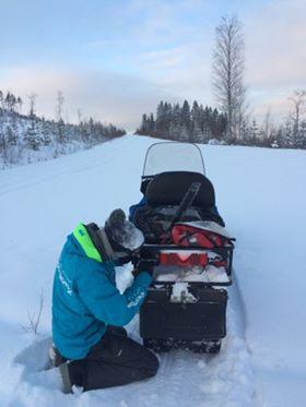 laponie-chien-traineau-hiver-sejour-moto-neige
