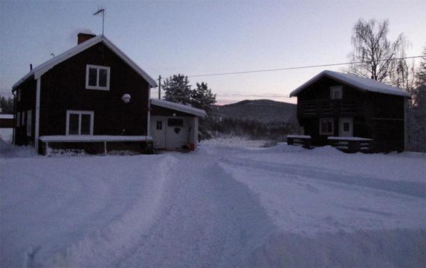 laponie-chien-traineau-hiver-sejour-neige