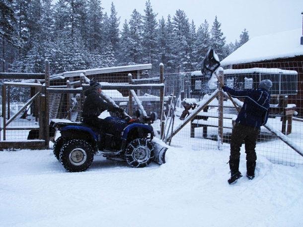 laponie-chien-traineau-sejour-hiver-deneigement-hiver