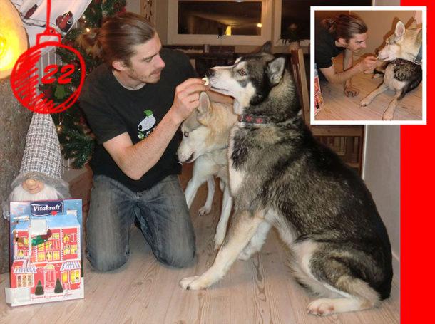 laponie-sejour-suede-chien-traineau-hiver-calendrier-huskies