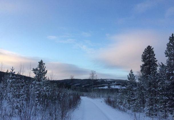 laponie-sejour-chien-traineau-hiver-piste