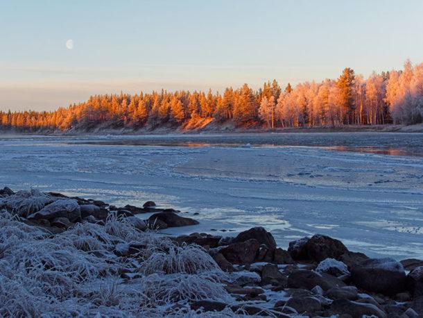 Suède : vacances insolites et séjour chien de traineau en Laponie Suédoise, venir se ressourcer en bord de rivière et admirer le paysage de la rivière gelée et du coucher de soleil sur les sapins