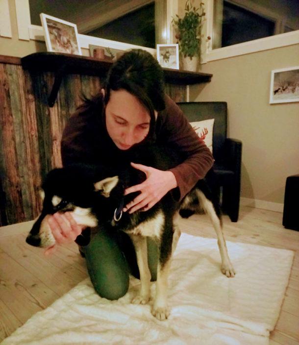 laponie-osteopathie-hiver-suede-chien-traineau-sante