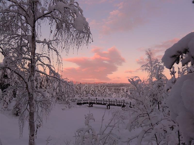 au nord de la suede paysage de laponie par grand froid d'hiver