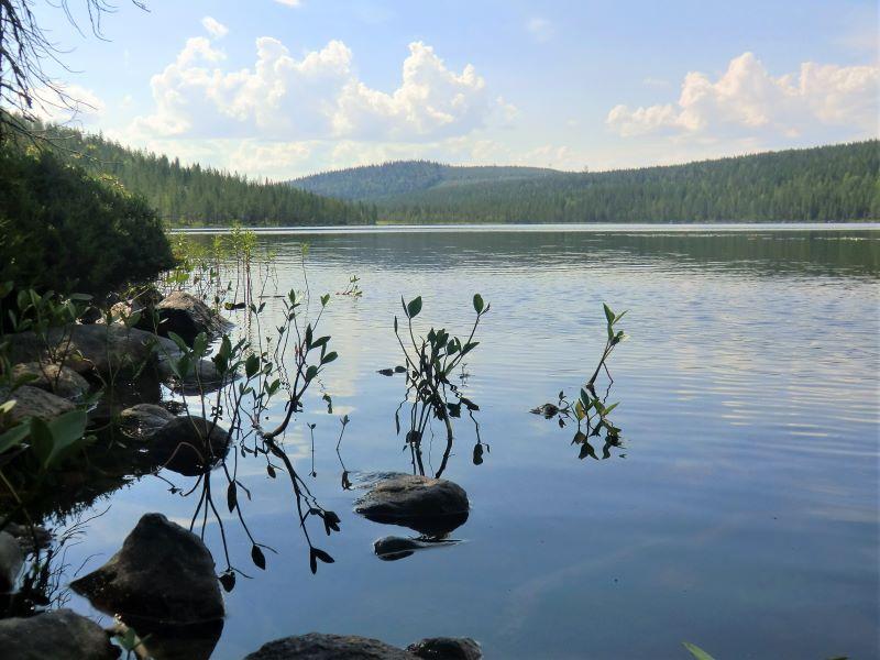 nature-bord-lac-peche-sejour-ete-calme-detente-zen