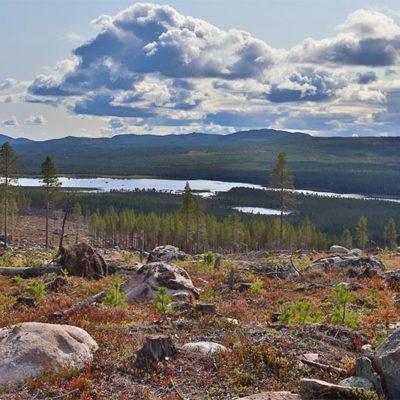 paysage point de vue sur lacs et panorama en laponie suédoise