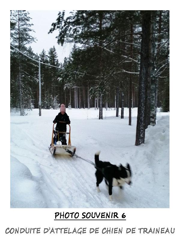 Conduite d'attelage de traîneau à chiens par les enfants